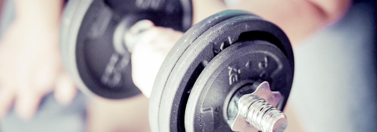 Metabolismul grasimilor