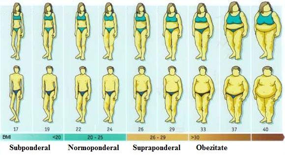 cum pierzi masa de grăsime corporală