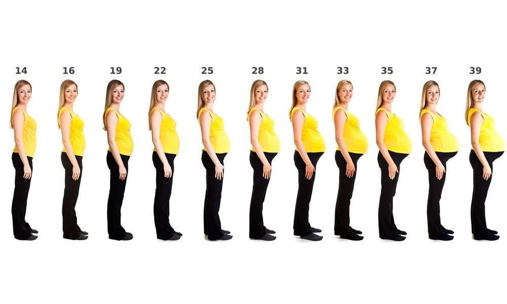 câtă greutate pierde în 5 luni