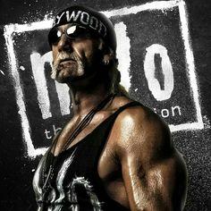 Ruby Riot WWE SmackDown WWE NXT Riott Squad, rubin, abdomen, Undergarment activ png | PNGEgg
