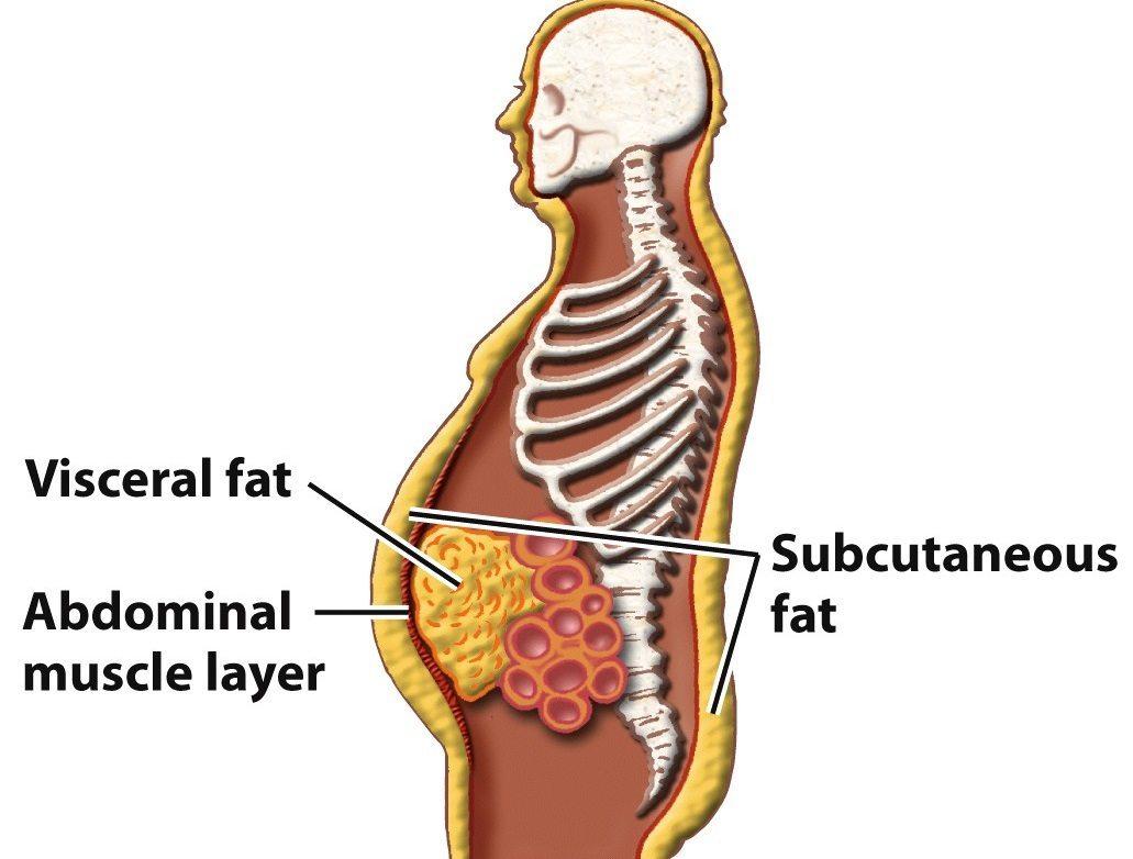 scădere în greutate de șasepad beneficiile gurii de sticlă pentru pierderea în greutate