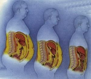 pierde grăsimea internă a corpului pierdeți în greutate într-o băutură săptămânală