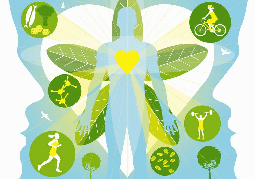 Ce este metabolismul bazal și cum se calculează BMR? - GymBeam Blog