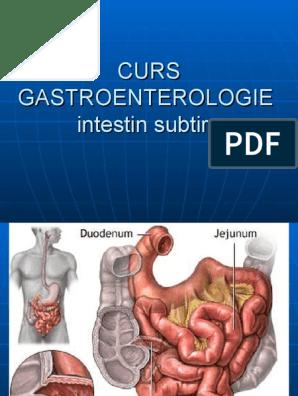 Bolile inflamatorii intestinale: cauze, simptome, tratament