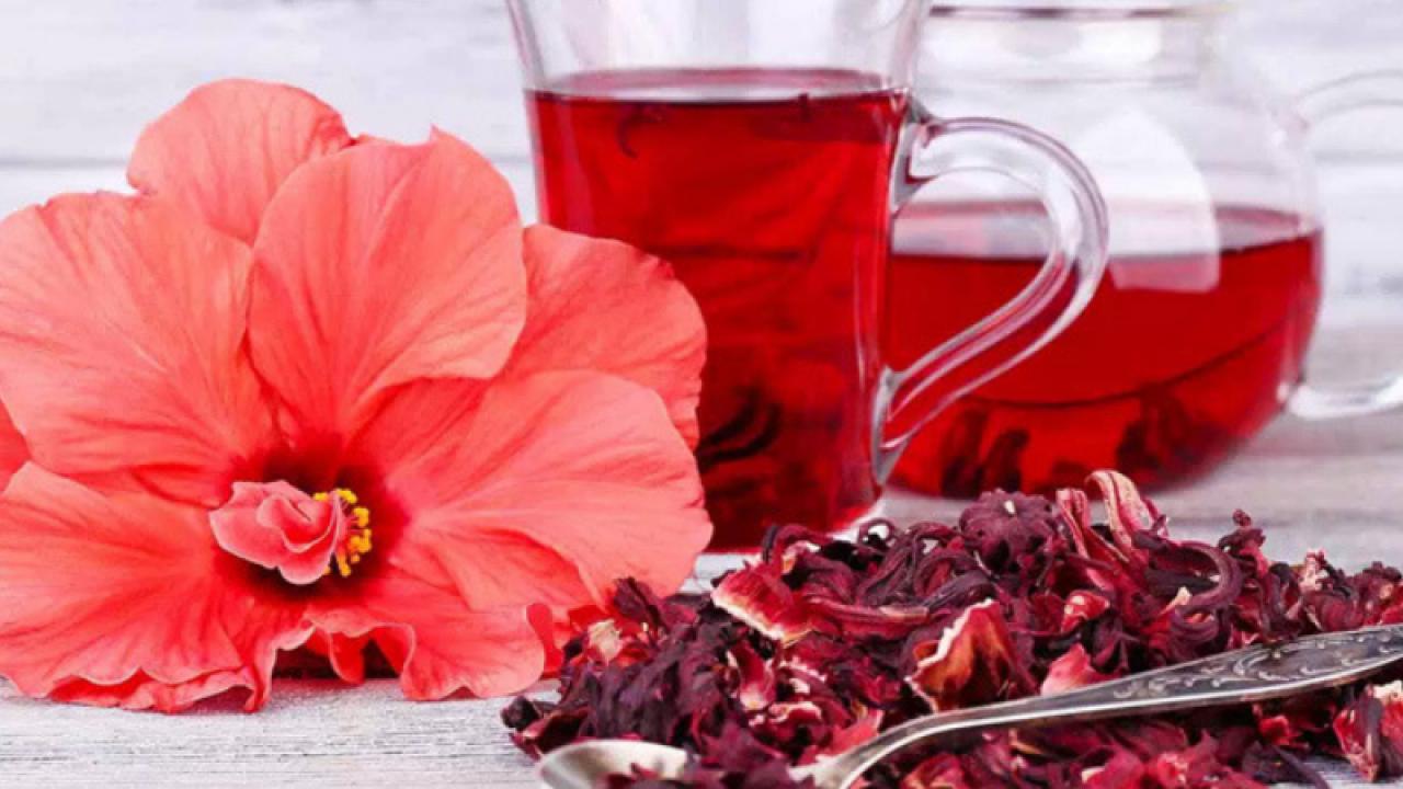 hibiscus ajută la pierderea în greutate