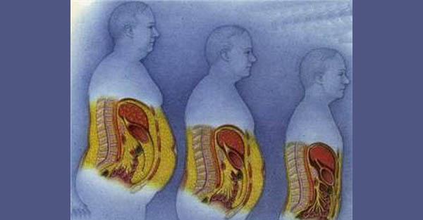 corpul tău pierde vreodată celulele grase