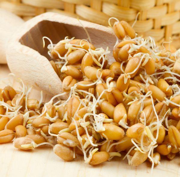 grasime incapatanata cum sa o pierzi glicemie scăzută pentru a pierde în greutate
