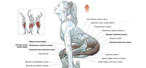 Cum să elimini grăsimea din abdomen și părți - Tratament