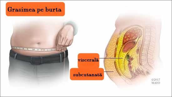 cum pot să-mi maximizez pierderea în greutate arzătoarele de grăsime stimulează metabolismul