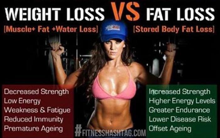 cum să pierzi burta de grăsime pierzi în greutate cu greutăți
